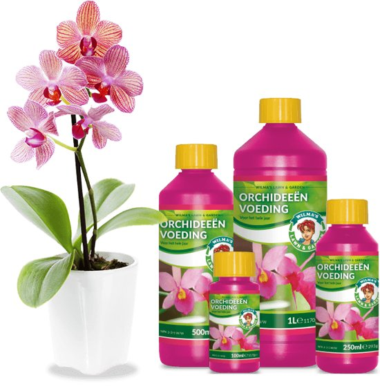Orkidea ravinne Orchid Nutrition