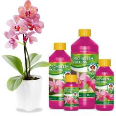 Orkidea ravinne Orchid Nutrition 100ml